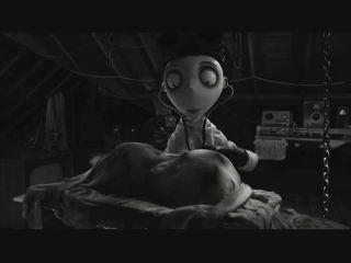 Video - #202: Tim Burton volta a ressuscitar «Frankenweenie»